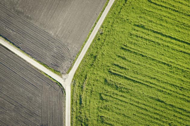 Luftaufnahme Drone DJI Mavic Feldweg